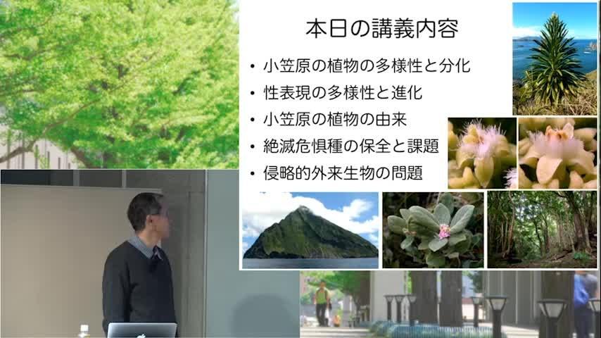 世界自然遺産「小笠原」を知る 小笠原諸島の植物
